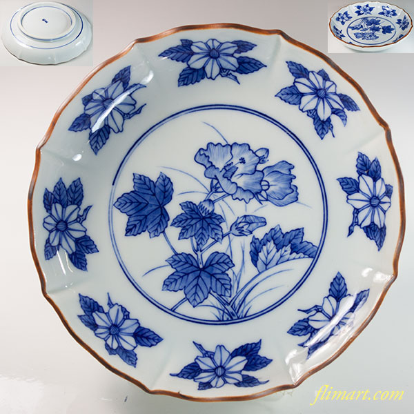 陶楽六寸浅鉢W6395